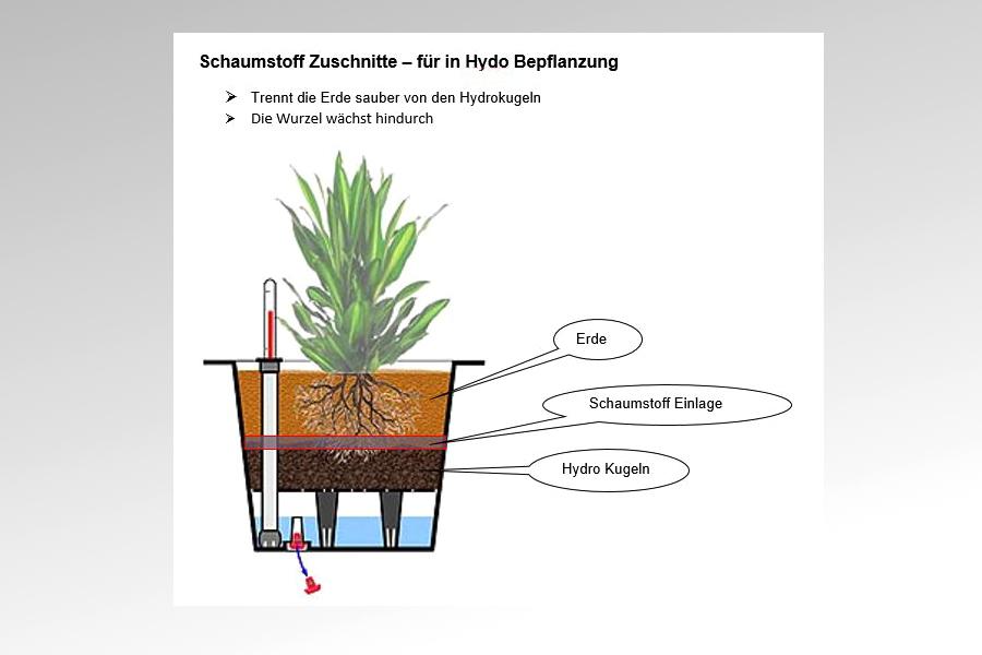 A. Bruhin AG - Zuschnitte für in Hydro Bepflanzung